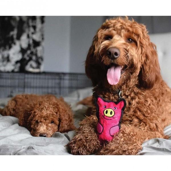 Invincibles Dog Toys Reviews